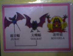 神奇寶貝-貼紙-進化